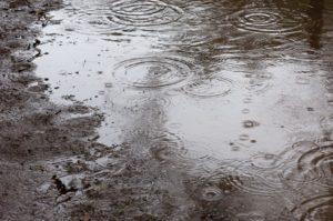 沖縄地方が梅雨入りしました
